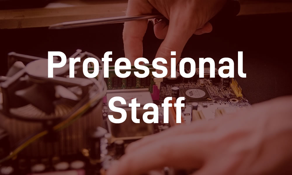 Professional Staff